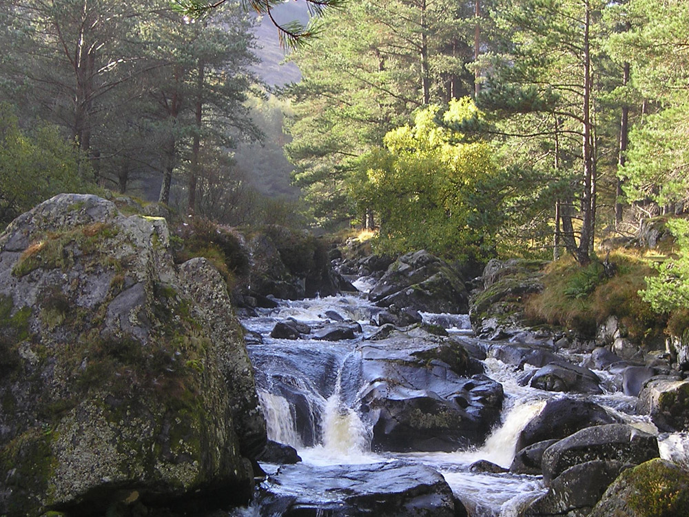 Glen Doll Waterfalls
